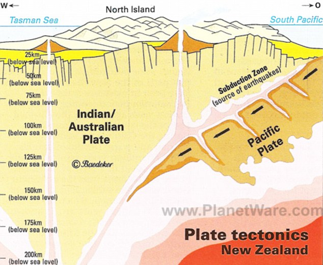 New Zealand tectonics 2